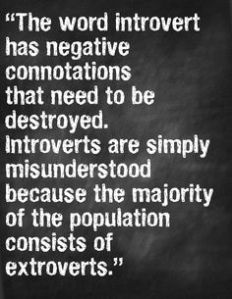 Being An Introverted SAPro