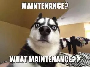 The maintenance I'm doing this weekend, of course! Silly Dog!