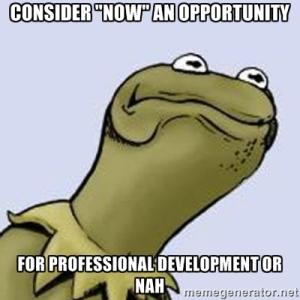 Professional_Development_Kermit